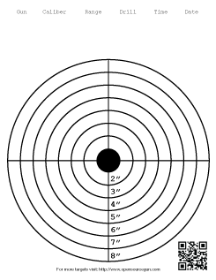 This is the bullzeye with 8 rings target